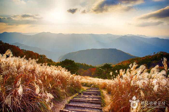 Gunung Mindungsan (민둥산)