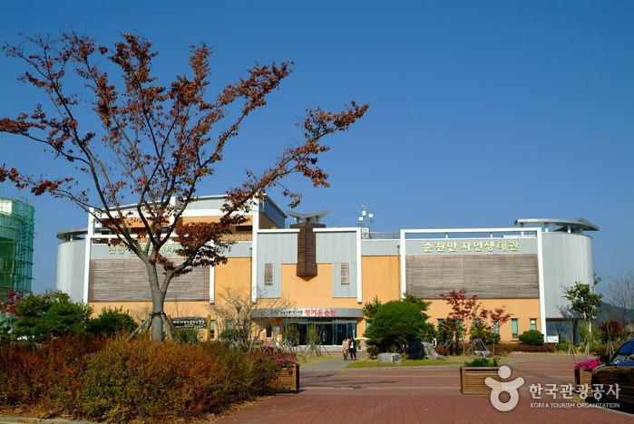 Museum Eco Teluk Suncheonman