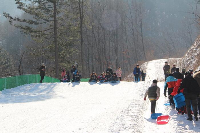 Festival Icefish Yangpyeong (물맑은양평 빙어축제)