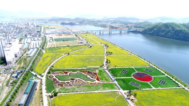 Menyambut Kedatangan Musim Semi di Festival Yuchae Nakdonggang Changnyeong