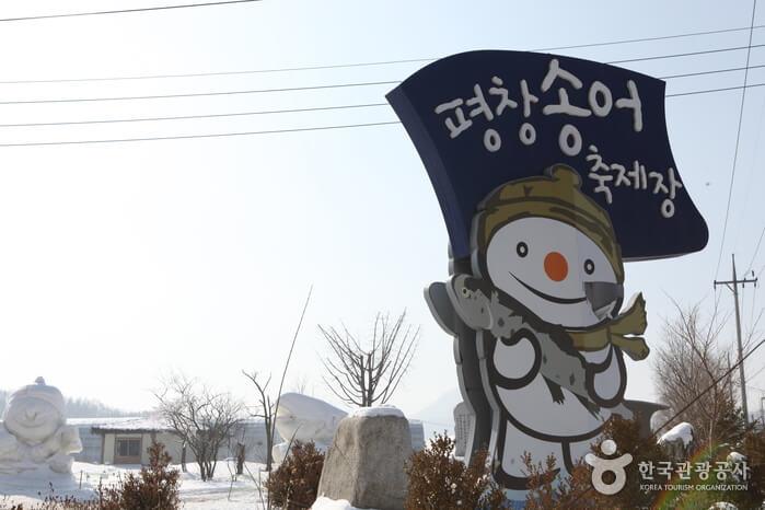 Festival Trout Pyeongchang (평창송어축제)