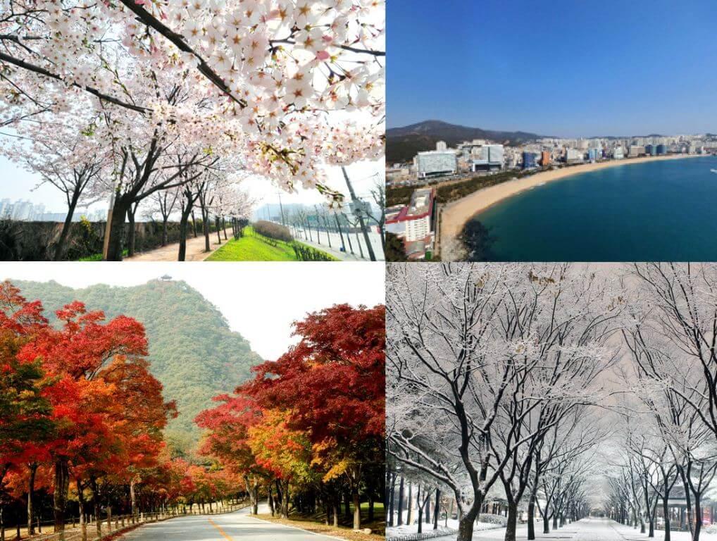 4 Musim di Korea