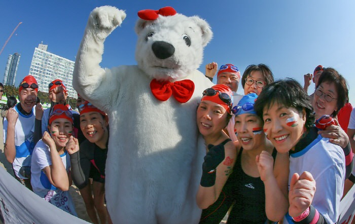Kontes Renang Beruang Kutub (Polar Bear Swimming Contest)