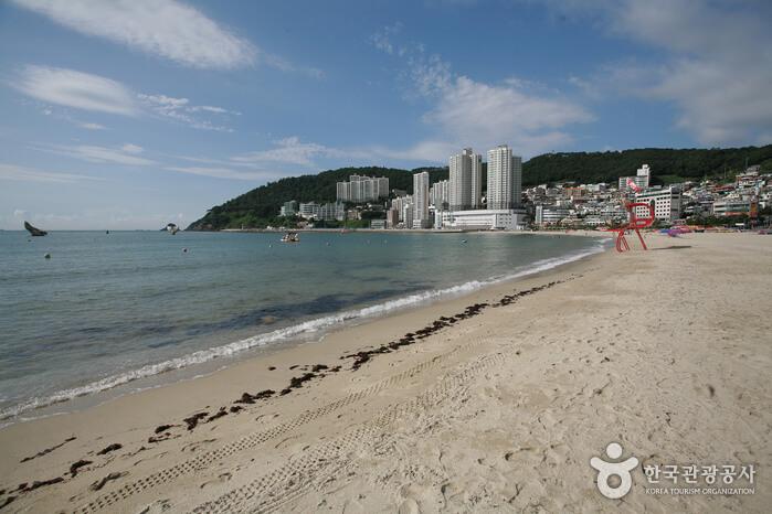 Pantai Songdo Busan (부산 송도해수욕장)