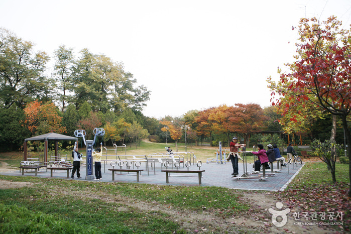Taman Keluarga Yongsan
