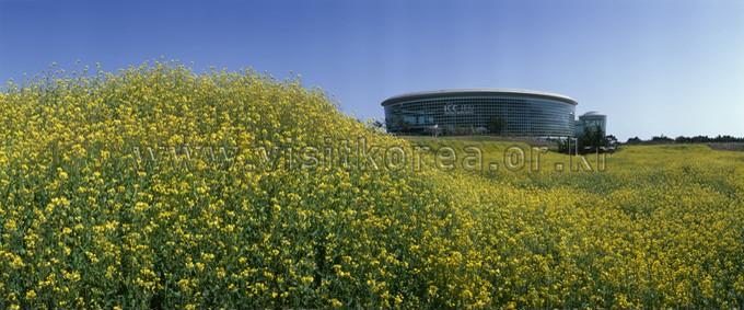 Jeju Convention Center