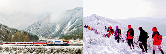 Kereta Api Salju dan Festival Musim Dingin