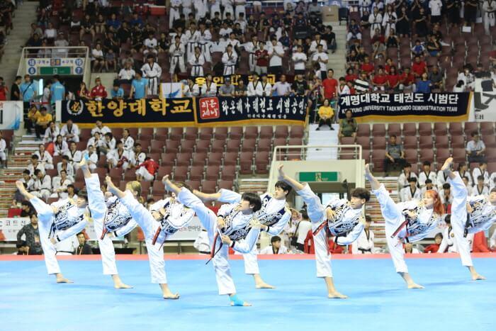 World Taekwondo Hanmadang (세계태권도한마당)