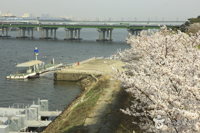 Taman Tepi Sungai Mangwon
