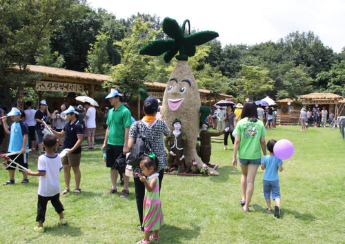 Festival Hamyang Wild Ginseng