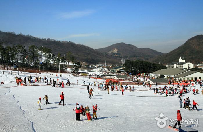 Resort Ski Hutan Jisan