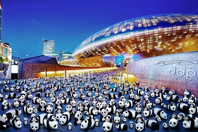 Perjalanan 1.800 Panda ke Korea Selatan