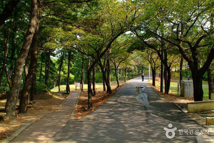 Taman Sarabong