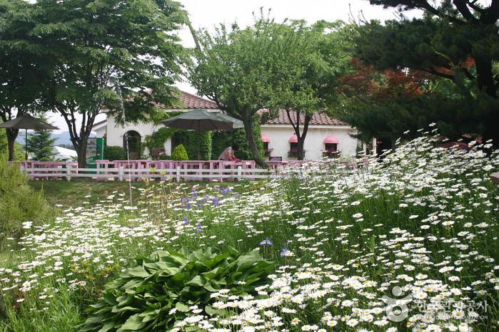 Ilyeong Herbland