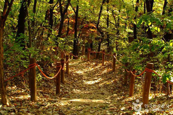 Taman Cheongdam