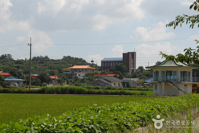 Desa Dalgogae Mosi (Kain Rami) Seocheon (서천 달고개모시마을)
