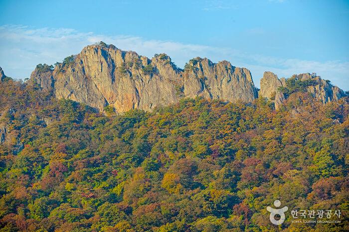 Taman Nasional Naejangsan