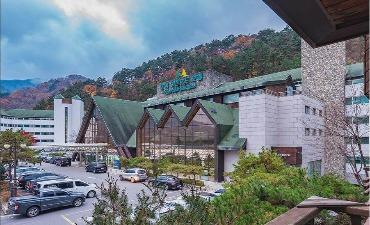 Osaek Greenyard Hotel 오색그린야드호텔