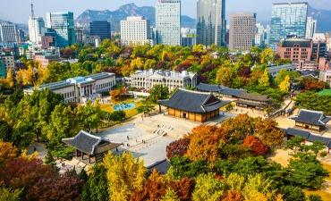 Destinasi Musim Gugur di Sekitar Seoul