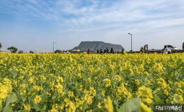 Zona Wisata Khusus Pulau Jeju (제주도 관광 특구)