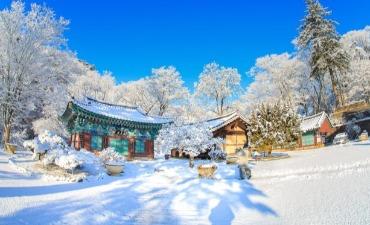 [Korea] Fokus Kembali dengan Bermalam di Kuil selama Libur Seollal!
