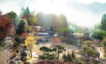 Pyeonbaek soop Healingtopia 편백숲 힐링토피아