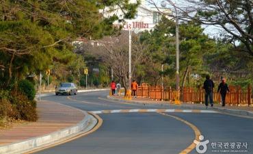 Dalmaji-gil Road