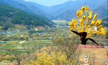Festival Sansuyu Gurye (구례산수유꽃축제)