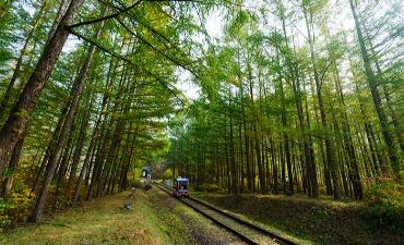 Kayuh Sepeda Relmu Menuju Alam yang Memukau
