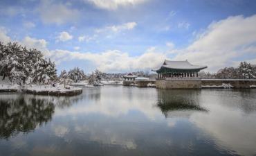 [Korea] Paket Wisata untuk Free Independent Traveler (FIT)!