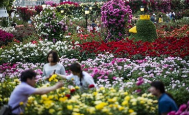 Rasakan Romansa di Festival Mawar Everland