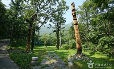 Photo_Taman Apsan Daegu (대구앞산공원)