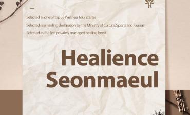 Healience Seonmaeul