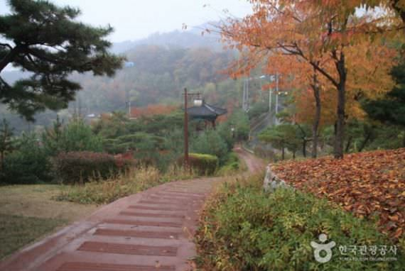 Festival Matahari Terbit Taman Inwangsan Cheongun