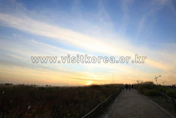 Festival Matahari Terbit Taman Haneul