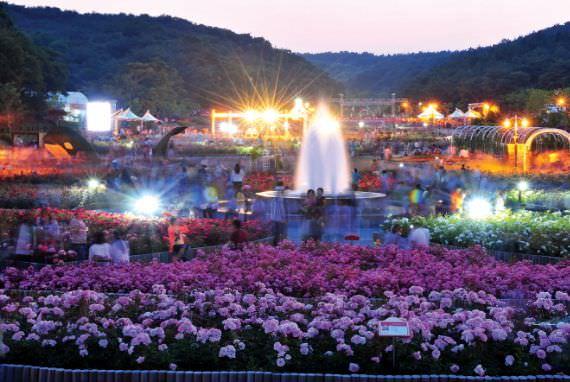 Festival Bunga Mawar Ulsan Grand Park