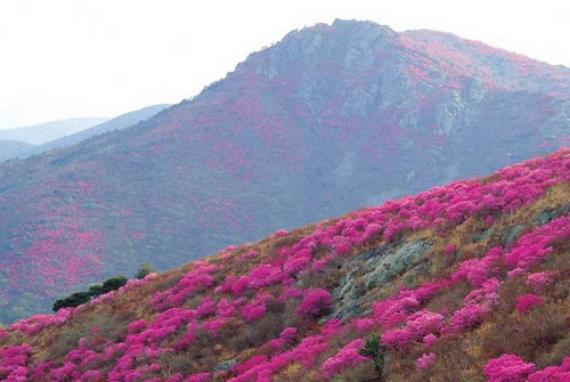 Gunung Yeongchwisan (Yeosu)