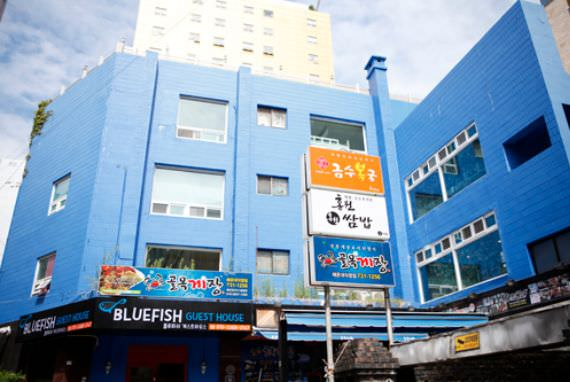 Blue Fish Guesthouse - Goodstay