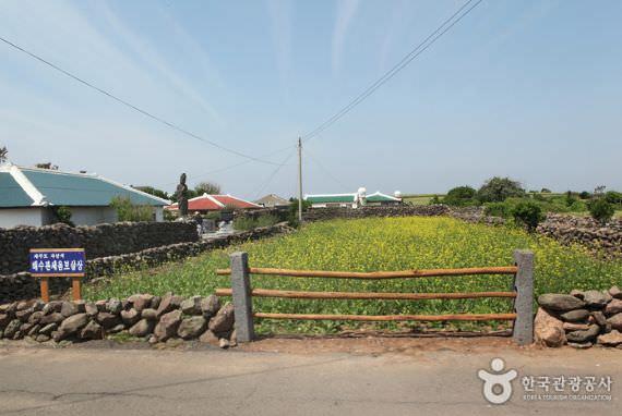 Pulau Gapado di Jeju