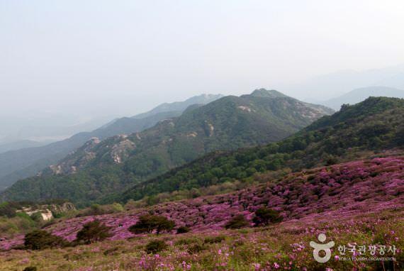 Gunung Hwangmaesan - Distrik Sancheong