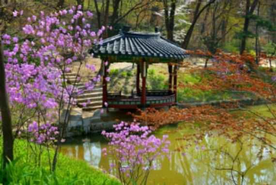Menikmati sensasi bunga bermekaran di Istana Kerajaan dan Makam Kerajaan