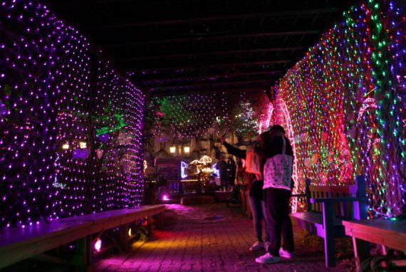 Festival Lampu dan Cahaya Pulau Herbal