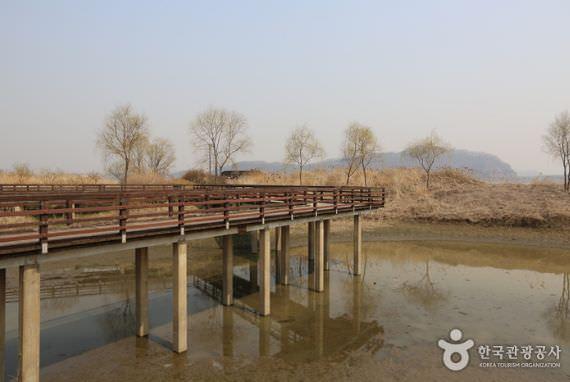 Taman Ekologi Rawa Gangseo