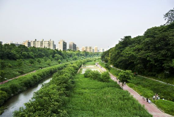 Jalan Kecil Sungai Yangjaecheon