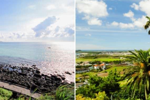 Tarif Tour Bus Kota Jeju Tour Bus akan Jauh Lebih Terjangkau