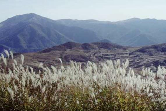 Sajpyeong Plain di Gunung Jaeyak  di Miryang, Gyeongsangnam-do