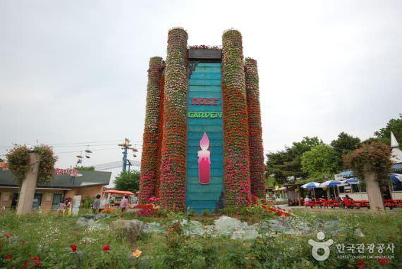 Taman Mawar di Seoul Grand Park