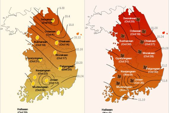 Proses Dedaunan Berguguran akan Dimulai dari Gunung Seoraksan pada 29 September