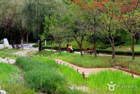 Mulhyanggi Arboretum