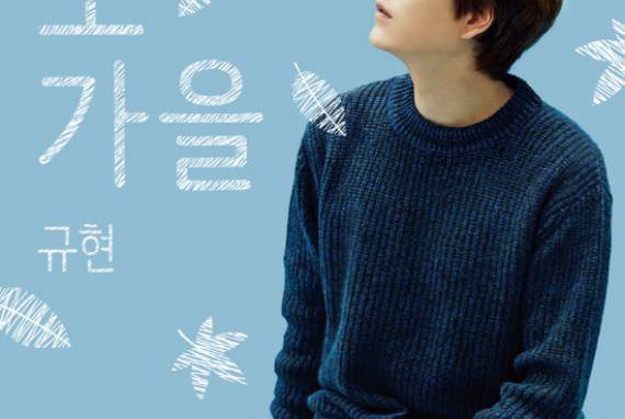 Konser Solo Pertama Kyuhyun Super Junior pada Bulan November